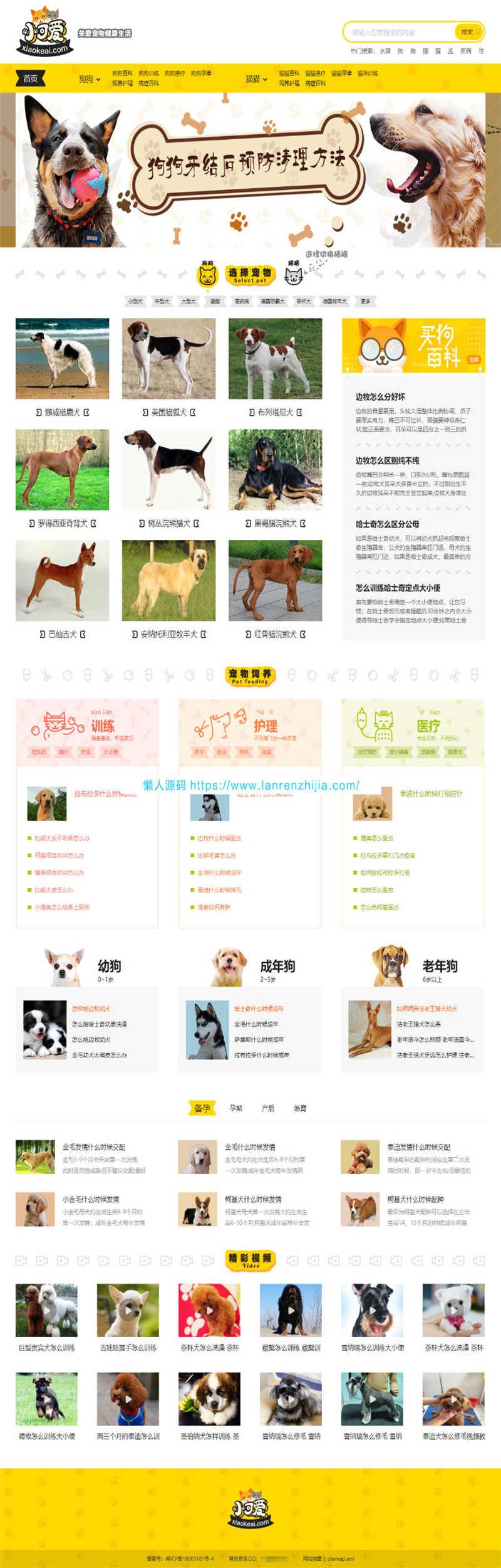 [新闻资讯]帝国CMS内核仿《小可爱宠物网》宠物资讯平台网站源码完整版+火车头采集+手机版-一天源码