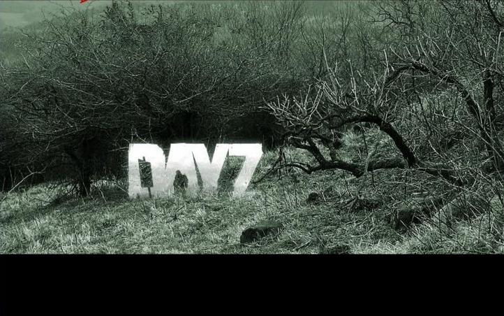 动作游戏【Dayz独立版】服务端+客户端+文字及视频教程-一天源码